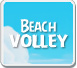 Angry-Birds-Rio-Beach-Volley-Icon