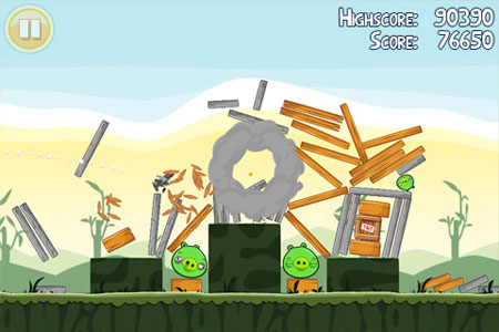 angry-birds-opinion-birds