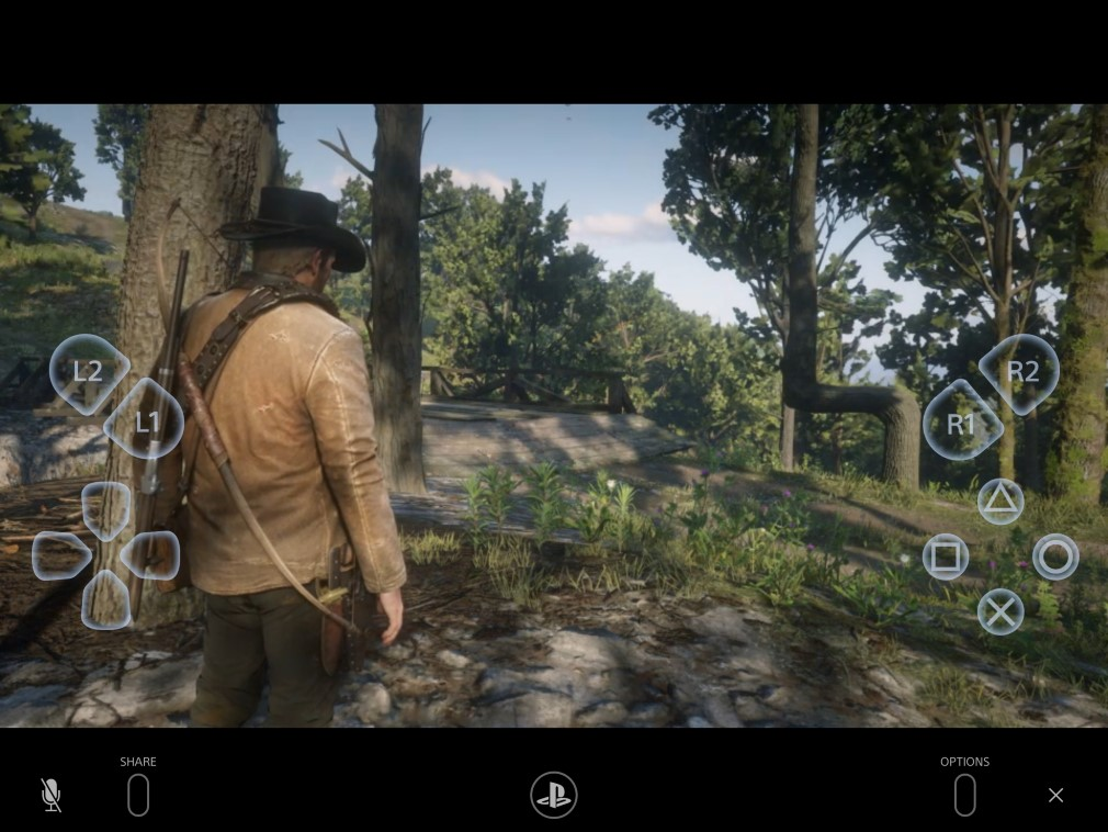 Red Dead Redemption 2 on PS4 Remote Play
