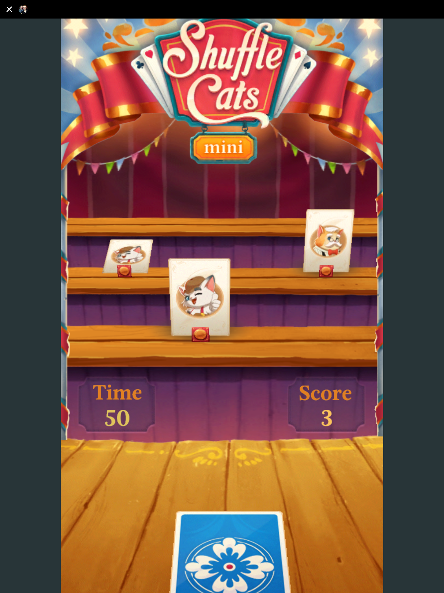 Shuffle Cats Mini Facebook Messenger review | Articles | Pocket Gamer