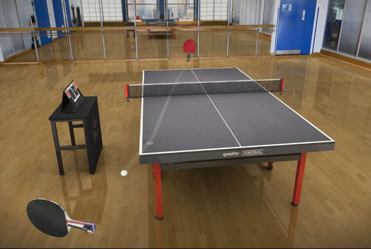 Table Tennis Touch: Tips to have you swatting with the paddles
