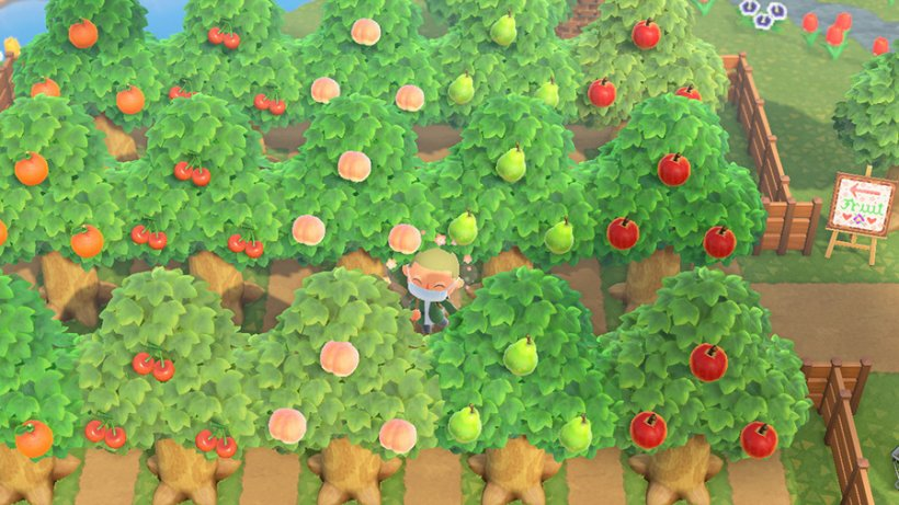 How to find Redd, upgrade your museum, and more in Animal Crossing: New Horizons