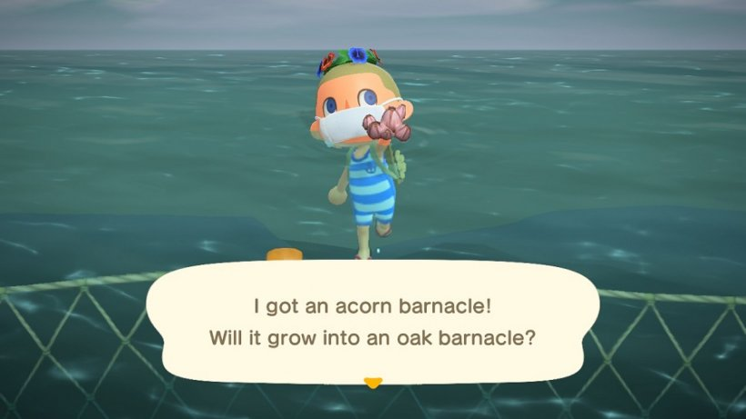 How to swim, dive, and catch sea creatures in the new Animal Crossing: New Horizons update