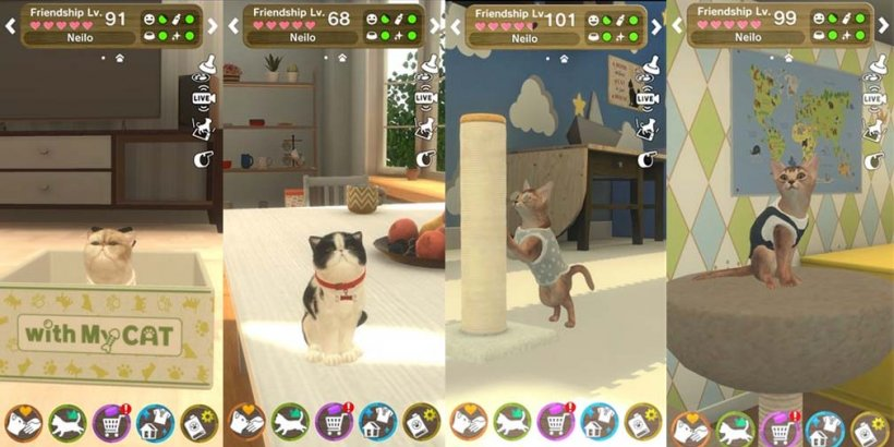 With My Cat adds Abyssinian and Exotic Shorthair to the cat collecting pet sim in latest update