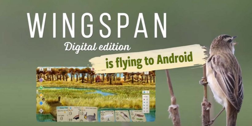 Wingspan soars the skies and lands on Android devices on November 9th, with pre-registration now open