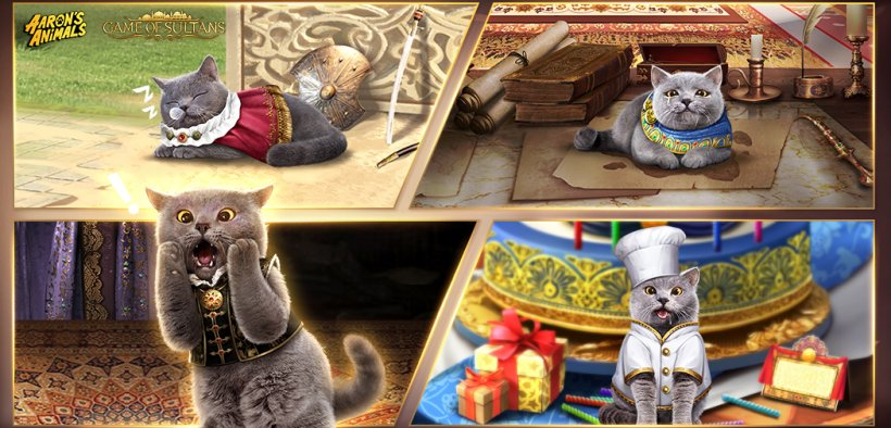 Game of Sultans cat