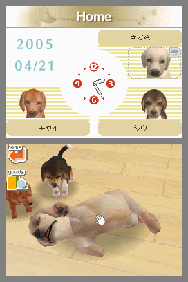 Nintendogs (Chihuahua & Friends)