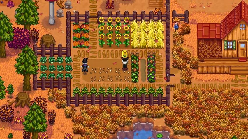 Stardew Valley's multiplayer update is still on the way and PC-users should be getting it soon