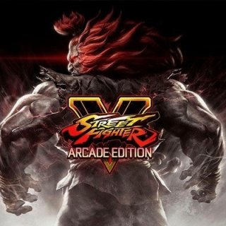 Street Fighter V: Arcade Edition - 6 mobile alternatives