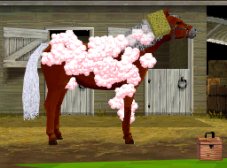 New Pony Friends DS screens