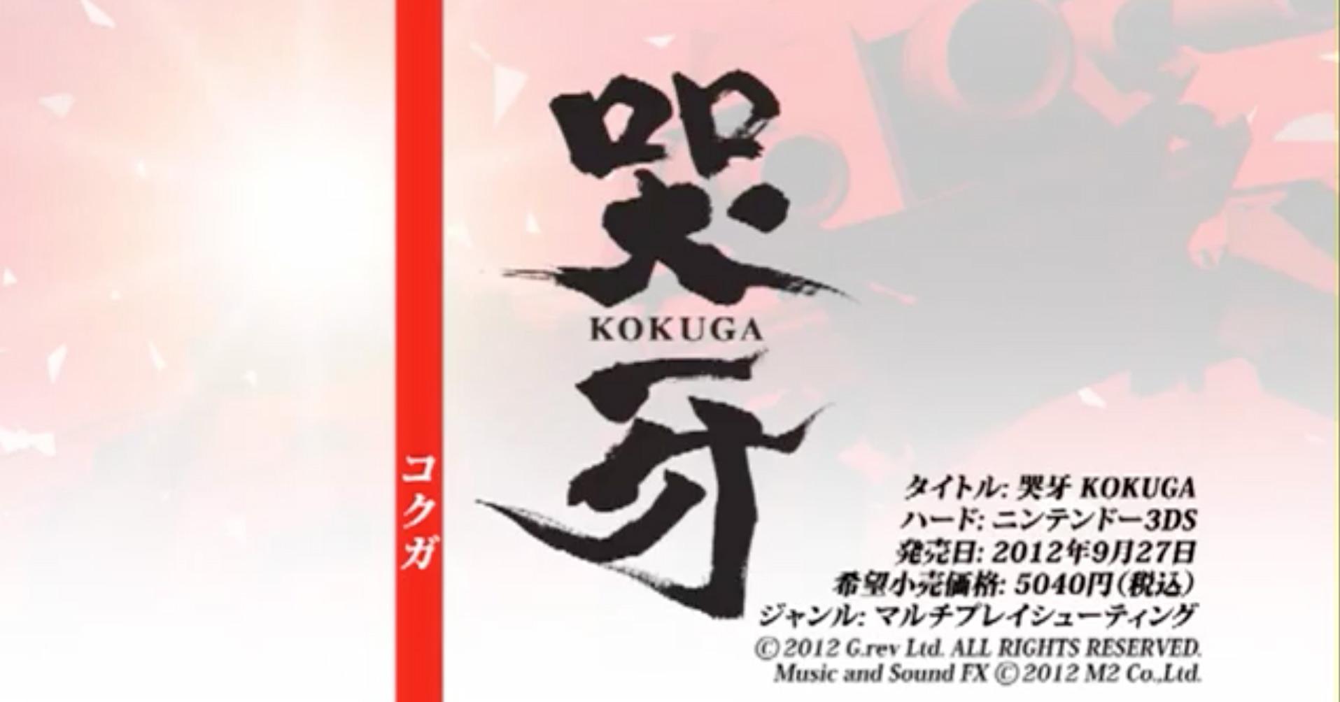 Ikaruga dev Hiroshi Iuchi bringing new shooter Kokuga to 3DS this month