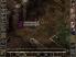 Baldur's Gate II: Enhanced Edition screenshot 4