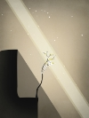 Prune Android,iPhone,iPad, thumbnail 1