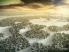 Dawn of Titans screenshot 1