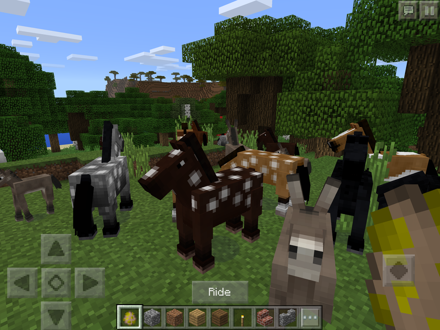 what do animals eat in minecraft
