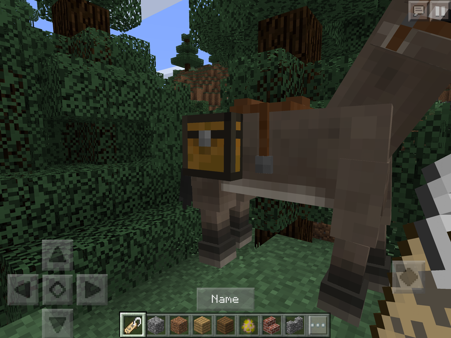 Name Tag Minecraft more than you'll ever need to know about horses in minecraft